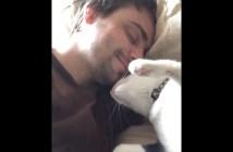 スリスリして飼い主さんを起こす猫