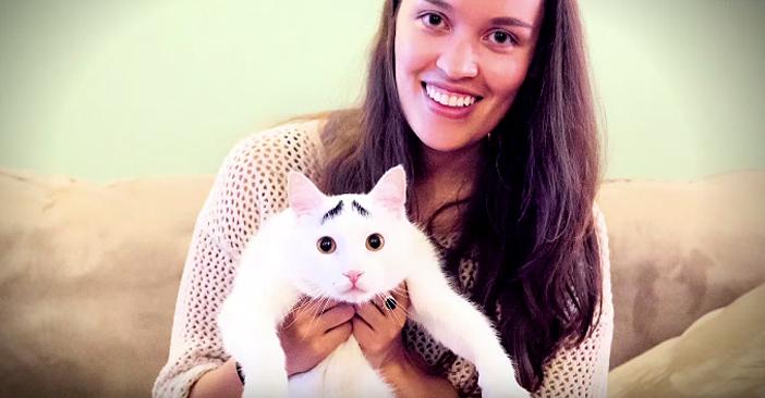 飼い主さんといっしょの困り顔の猫