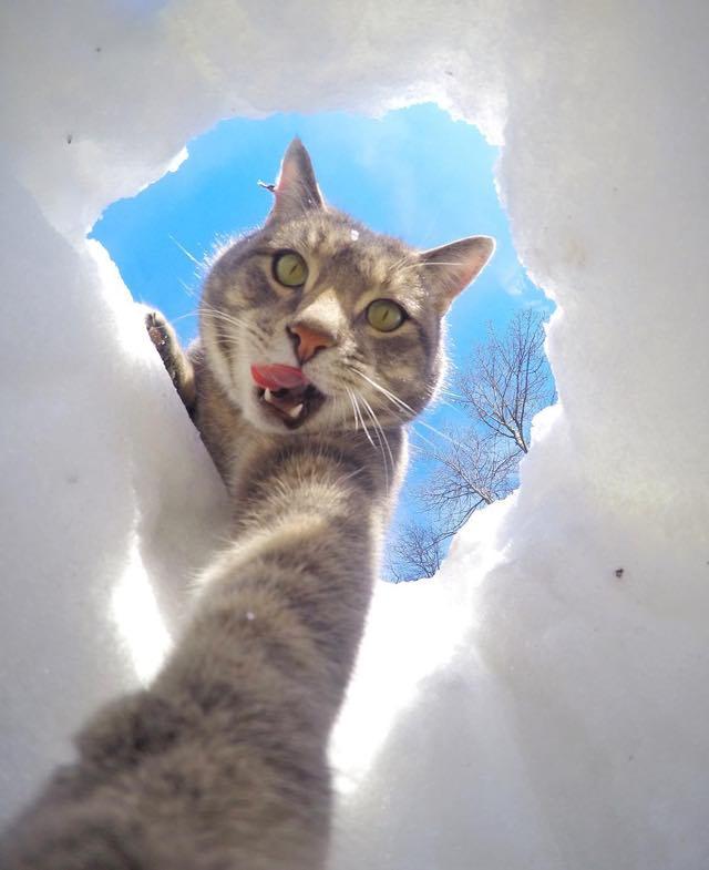 雪の中から自撮り写真
