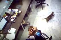 監視カメラがとらえた衝撃映像