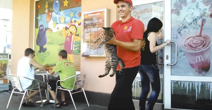 マクドナルドにクルーに持って行かれる猫