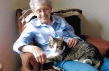 いつもいっしょのおばあちゃんと猫