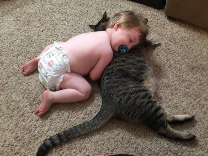 ネコ枕で眠る赤ちゃん