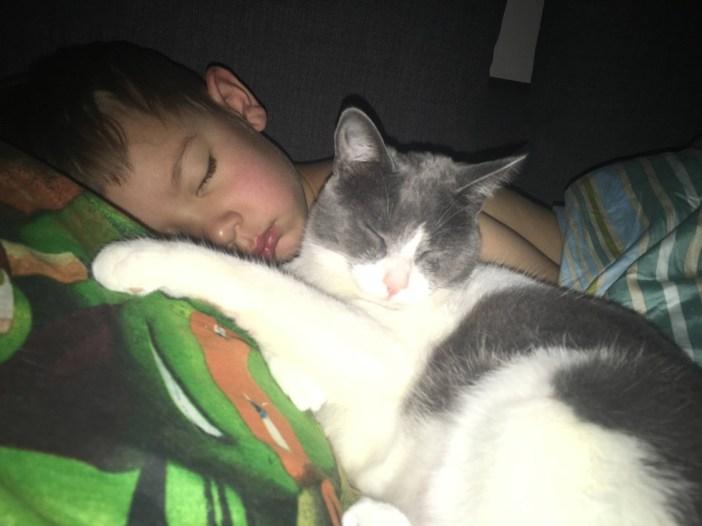 今でもいっしょの少年と猫