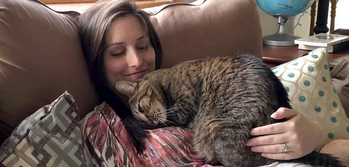 妊娠中の飼い主さんに寄り添う猫