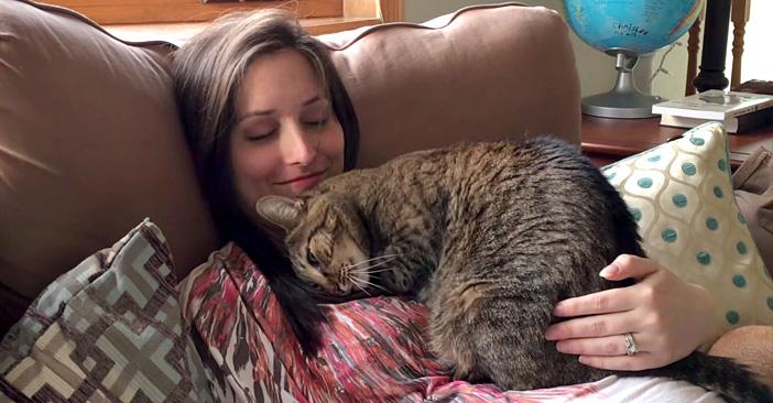 「猫と飼い主」の画像検索結果