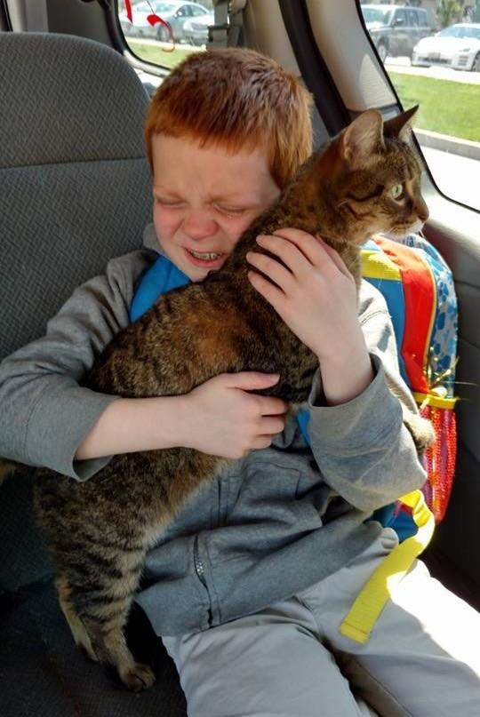 猫と自閉症の男の子の再会