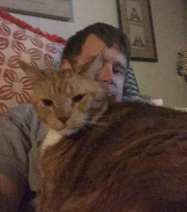 男性といっしょの猫