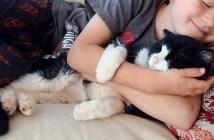 20歳の老猫を迎え入れた家族