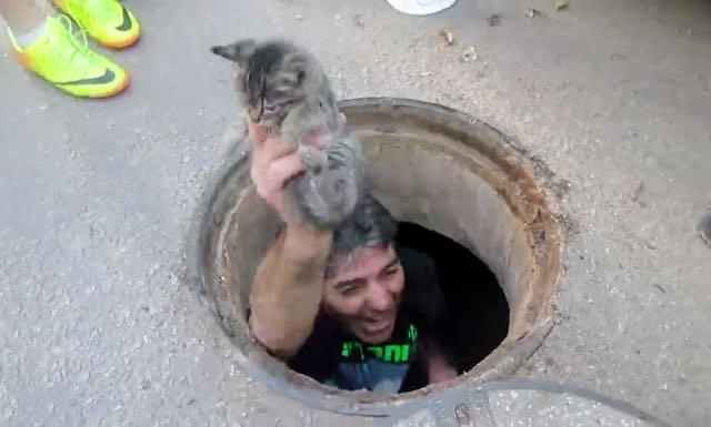 子猫を救い出した男性