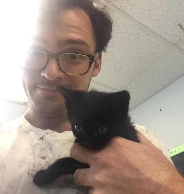 男性に持たれる子猫
