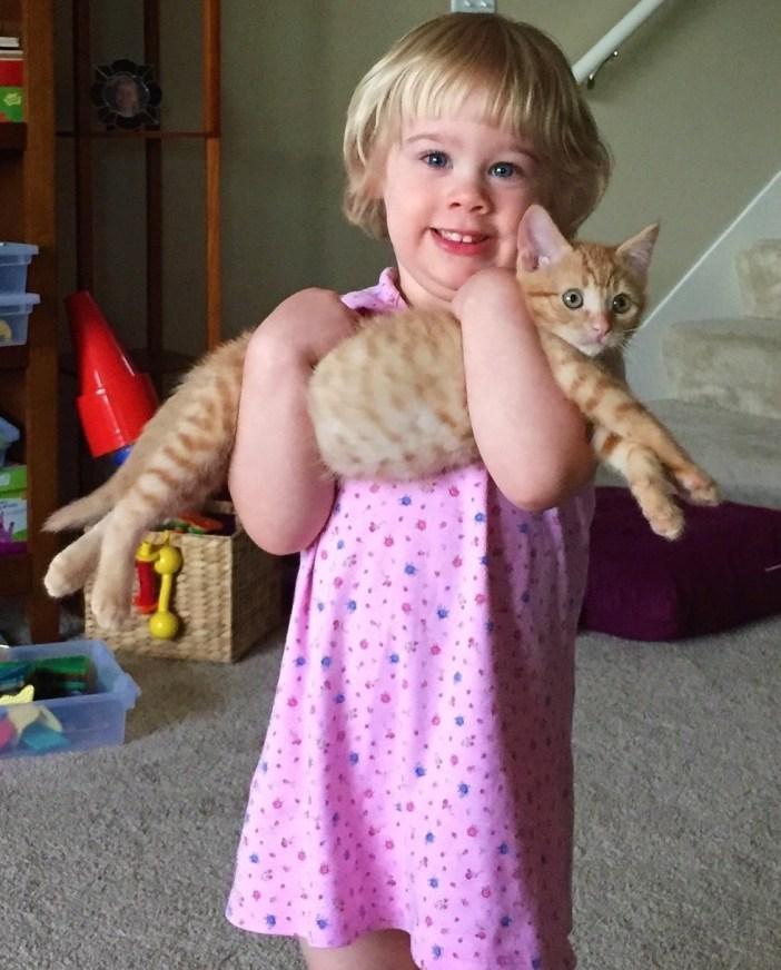 子猫を持つ女の子