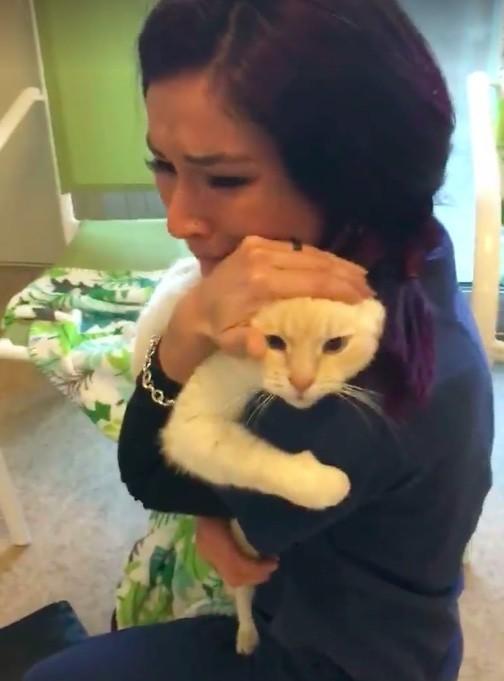 2年後に帰ってきた猫