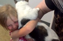 猫と再会した少女