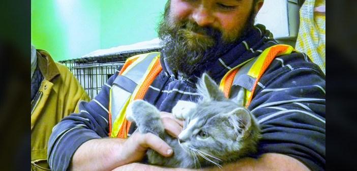 厳しい寒さの中、雪の吹き溜まりに埋まっていた子猫。助けてくれた男性に、感謝の気持ちが止まらない! (5枚)