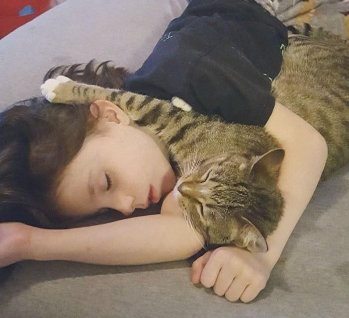 女の子と一緒に眠る子猫