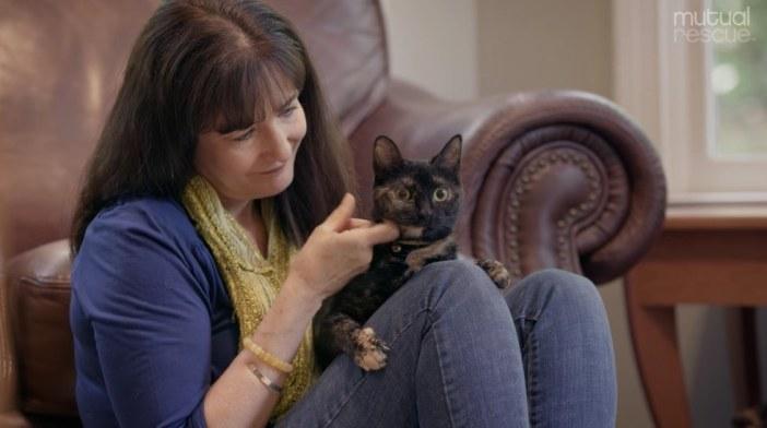 お母さんと猫