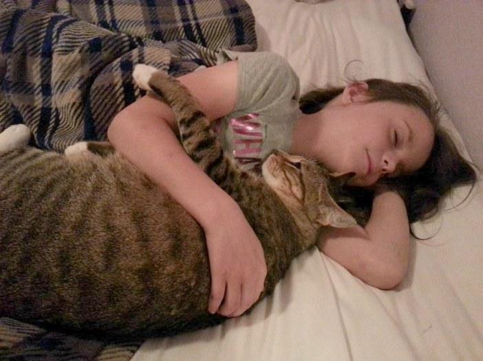 いっしょに眠る女の子と猫