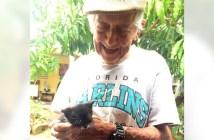 子猫を育てるおじいちゃん