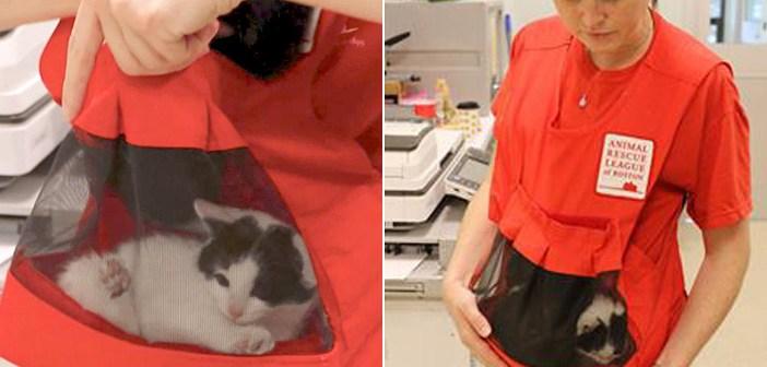 子猫専用のポケットがついた素敵なベスト。保護子猫を人間に慣れさせ、里親さんを早く見つける手助けに (5枚)