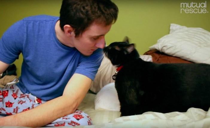 キスする男性と猫