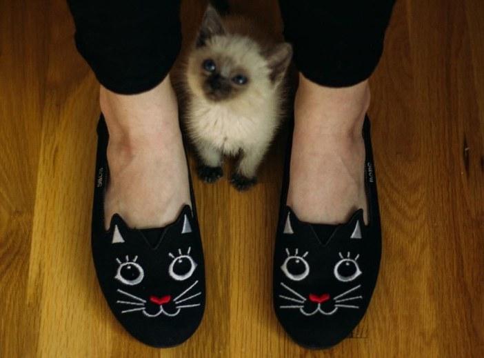 足に挟まる子猫