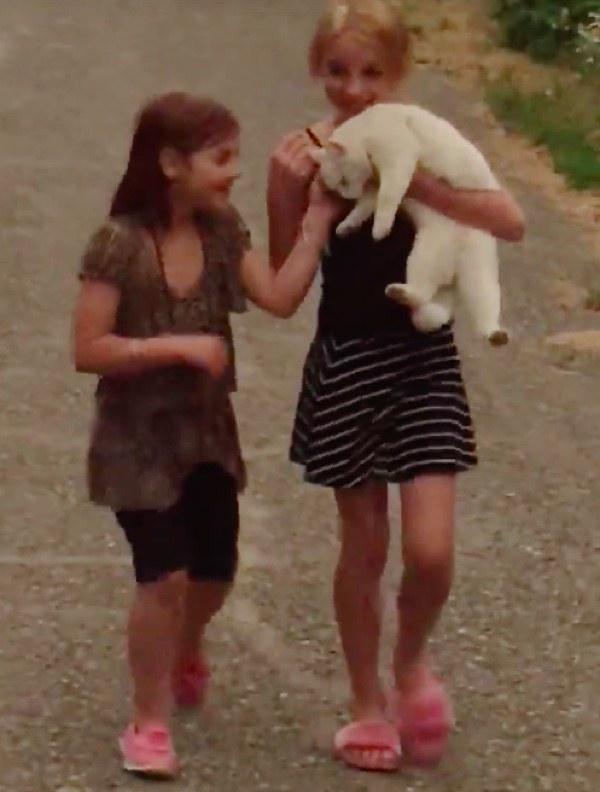 抱きかかえられる猫