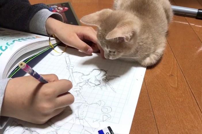 絵を見つめる子猫