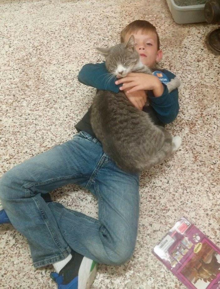 抱き合う男の子と猫