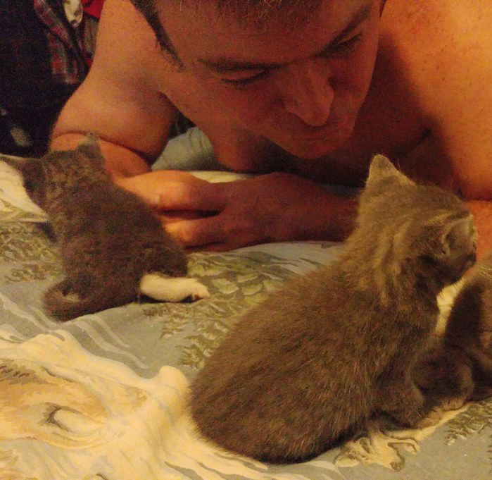 子猫と男性