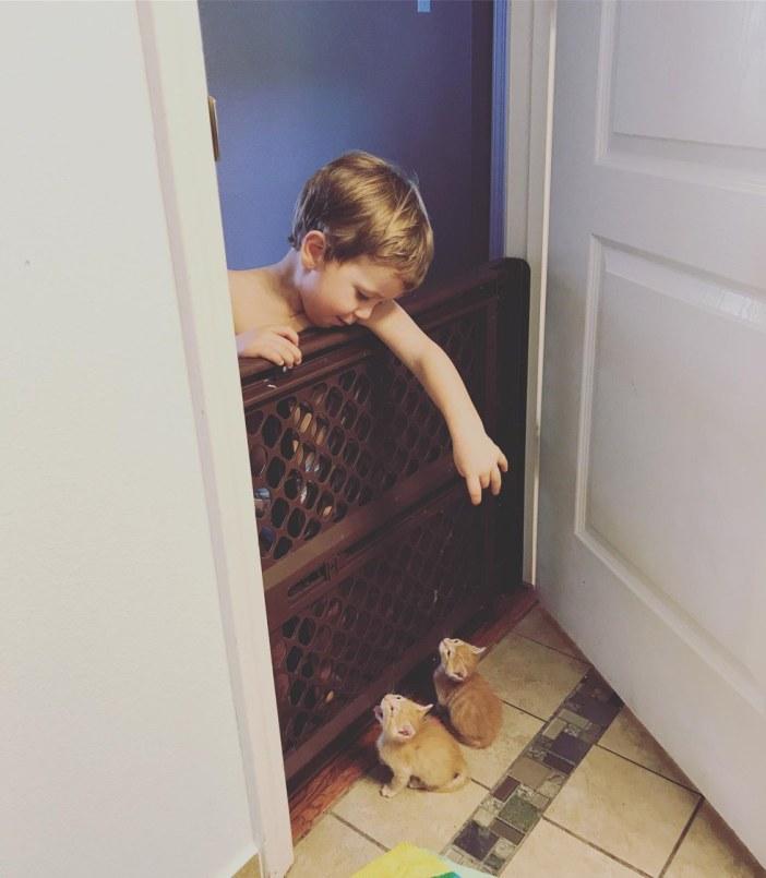 子猫と一緒の男の子
