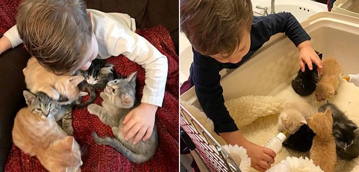 子猫を育てる男の子