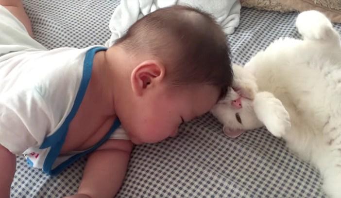 赤ちゃんのゴチン