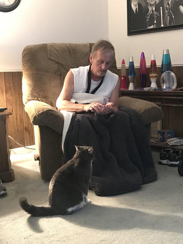 飼い主さんと一緒の猫