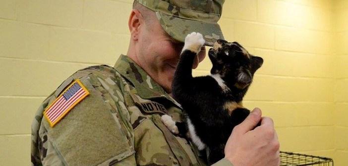 ずっと猫に興味がなかった男性。ある日、子犬を探しに保護施設に向かうと、1匹の猫に選ばれて驚くほどの猫好きに!
