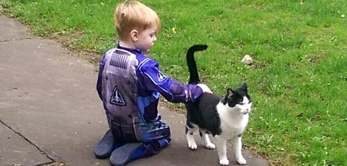 隣の家の猫さんと友達になる決心した少年。1年間の努力の末、ついに待ち望んだ瞬間が (〃∇〃)!