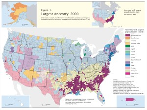 Census-2000-Data-Top-US-Ancestries-by-County