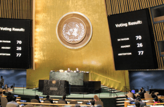 "70 countries voted in support of the resolution ""Situation of human rights in the Autonomous Republic of Crimea and the city of Sevastopol (Ukraine)."" Photo: UN press center"