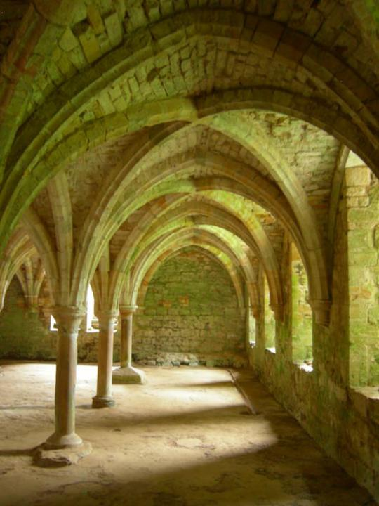 The gothic naves of the west undercroft