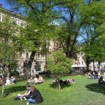 Esplanadi: locals relaxing in the park