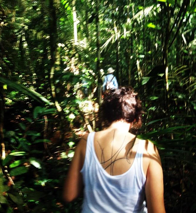 cruzeiro-amazonia-iberostar-eusouatoa-4-floresta