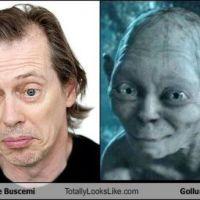 Steve Buscemi looks like...