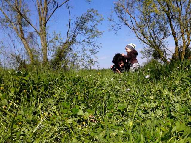 109 | Petit apprenti photographe naturaliste