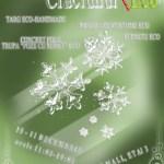 Poster Craciunul Eco 2011