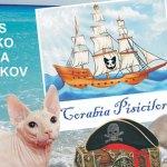 sofisticat-expozitie-pisici-Mamaia