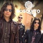 concert-bosquito-constanta-2