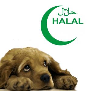 halal pup