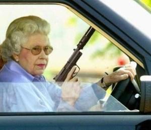 Angry woman no match for PC Flegg's tazer