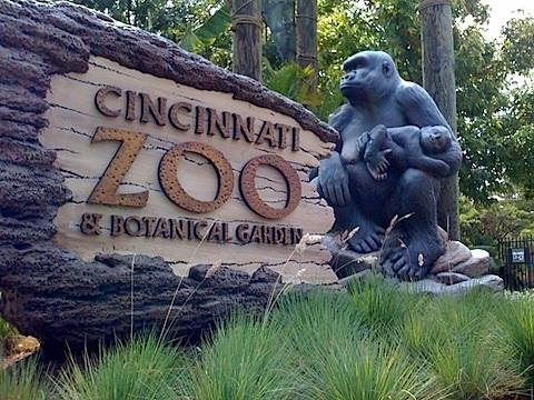 cincy-zoo.jpg