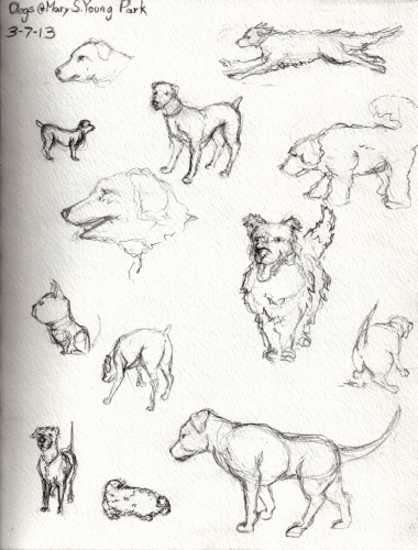 Quick pencil sketches of the cute pups at the dog park.